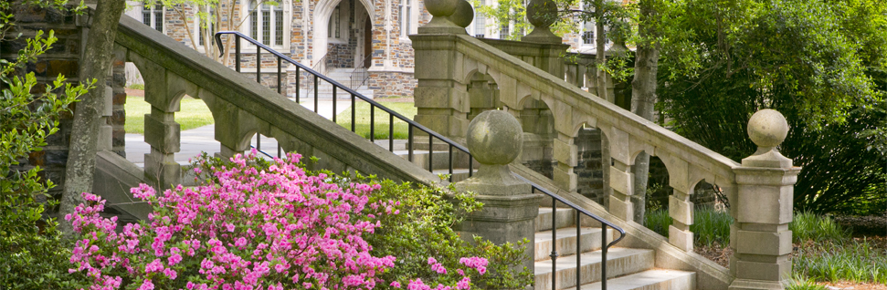 Home - Duke University